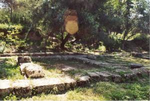 akademija - vrt
