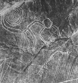 Geoglif majmuna, fotografija Marije Rajhe 1953