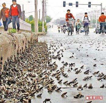 Pre zemljotresa u Kini